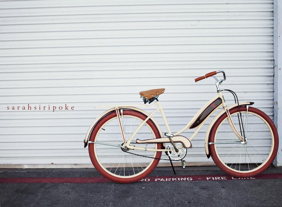 bike_wall